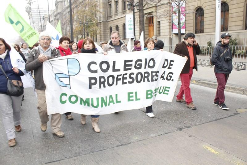 CARTA DESDE EL BOSQUE: RESPETAR LA INSTITUCIONALIDAD