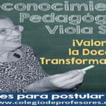 Reconocimiento Pedagógico 'Viola Soto'
