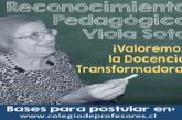 Extienden plazo de postulación para Reconocimiento Pedagógico 'Viola Soto'