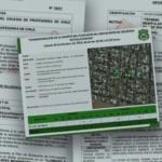 Justicia acoge recurso de protección por espionaje de Carabineros a dirigentes sociales
