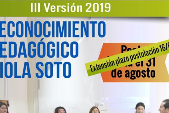 Forma y plazos para postular al Reconocimiento Pedagógico Viola Soto