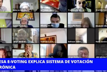 El miércoles 9 de diciembre se harán las elecciones internas del Colegio de Profesores en formato digital